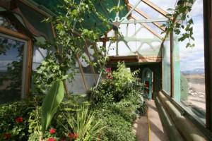 global_greenhouse5